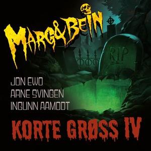 Korte grøss IV (lydbok) av Ingunn Aamodt, Arn