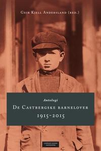 De Castbergske barnelover 1915-2015 (ebok) av
