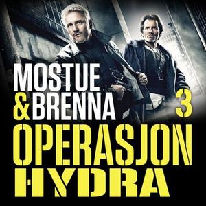 Operasjon Hydra (lydbok) av Johnny Brenna, Si