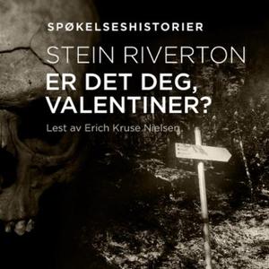 Er det deg, Valentiner? (lydbok) av Stein Riv