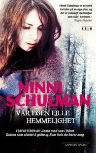 Vår egen lille hemmelighet (ebok) av Ninni Sc