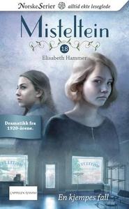 En kjempes fall (ebok) av Elisabeth Hammer