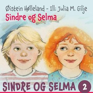 Sindre og Selma (lydbok) av Øistein Hølleland