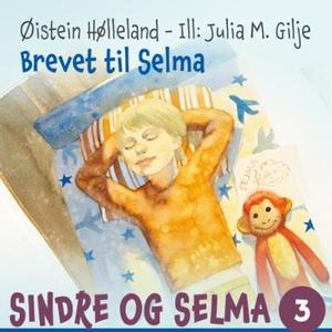 Brevet til Selma (lydbok) av Øistein Høllelan
