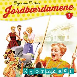Stormkast (lydbok) av Synnøve Eriksen