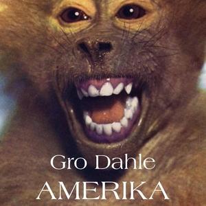 Amerika (lydbok) av Gro Dahle