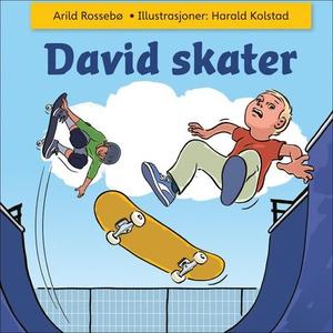 David skater (lydbok) av Arild Rossebø