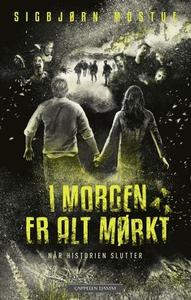 Når historien slutter (ebok) av Sigbjørn Most