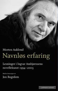 Navnløs erfaring (ebok) av Morten Auklend