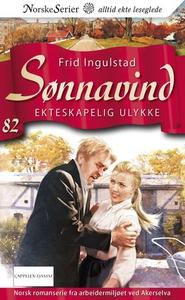 Ekteskapelig ulykke (ebok) av Frid Ingulstad