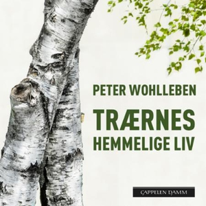 Trærnes hemmelige liv (lydbok) av Peter Wohll