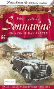 En kvinne bak rattet (ebok) av Frid Ingulstad