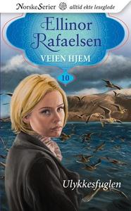 Ulykkesfuglen (ebok) av Ellinor Rafaelsen