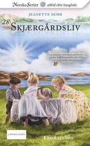 Familiebånd (ebok) av Jeanette Semb