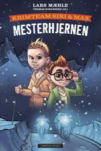 Mesterhjernen (ebok) av Lars Mæhle