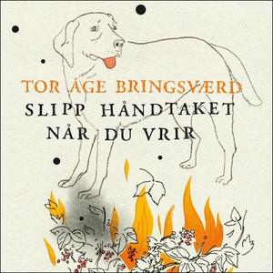 Slipp håndtaket når du vrir (lydbok) av Tor Å