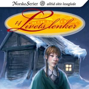 Vinternatt (lydbok) av Christin Grilstad Prøi