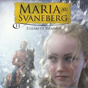 Stjålne øyeblikk (lydbok) av Elisabeth Hammer