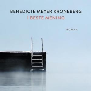 I beste mening (lydbok) av Benedicte Meyer Kr