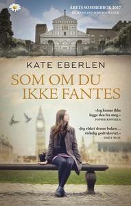 Som om du ikke fantes (ebok) av Kate Eberlen