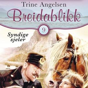 Syndige sjeler (lydbok) av Trine Angelsen
