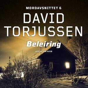 Beleiring (lydbok) av David Torjussen