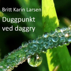 Duggpunkt ved daggry (lydbok) av Britt Karin
