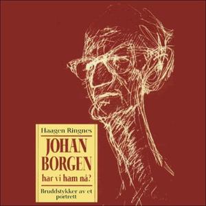 Johan Borgen (lydbok) av Haagen Ringnes