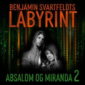 Benjamin Svartfeldts labyrint (lydbok) av Tor