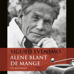 Sigurd Evensmo (lydbok) av Stian Bromark, Hal