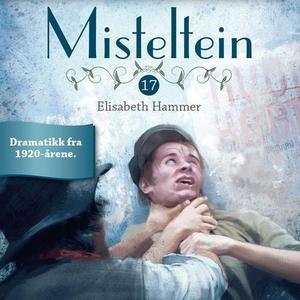 Skjebnetime (lydbok) av Elisabeth Hammer