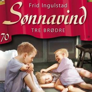 Tre brødre (lydbok) av Frid Ingulstad