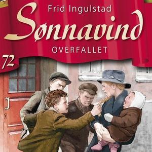 Overfallet (lydbok) av Frid Ingulstad