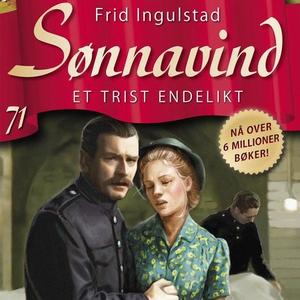 Et trist endelikt (lydbok) av Frid Ingulstad