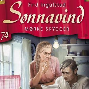 Mørke skygger (lydbok) av Frid Ingulstad