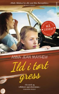 Ild i tørt gress (ebok) av Anna Jean Mayhew