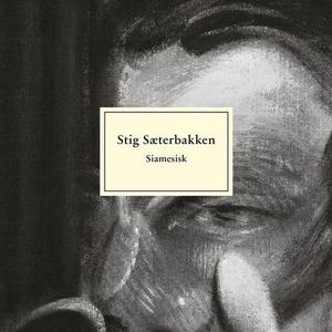 Siamesisk (lydbok) av Stig Sæterbakken