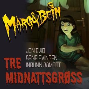 Tre midnattsgrøss (lydbok) av Ingunn Aamodt,