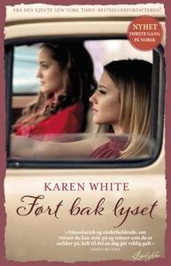 Ført bak lyset (ebok) av Karen White