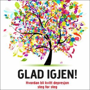 Glad igjen! (lydbok) av Kristian Hall