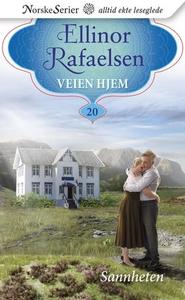 Sannheten (ebok) av Ellinor Rafaelsen