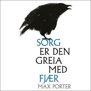 Sorg er den greia med fjær (lydbok) av Max Po