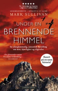 Under en brennende himmel (ebok) av Mark Sull