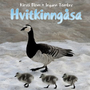 Hvitkinngåsa (lydbok) av Kirsti Blom, Ingunn