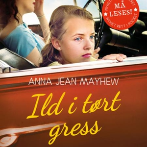 Ild i tørt gress (lydbok) av Anna Jean Mayhew