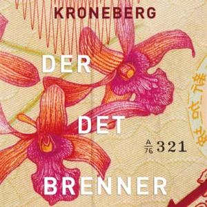 Der det brenner (lydbok) av Benedicte Meyer K