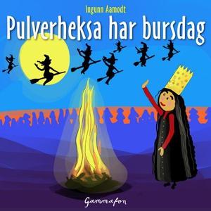 Pulverheksa har bursdag (lydbok) av Ingunn Aa