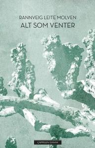 Alt som venter (ebok) av Rannveig Leite Molve