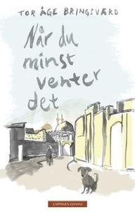Når du minst venter det (ebok) av Tor Åge Bri