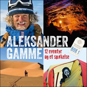 12 eventyr og et spøkelse (lydbok) av Aleksan